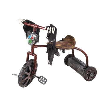 TRICYCLE HANTE 58 X 42CM...